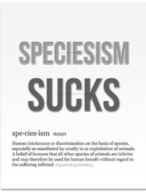 spec defined