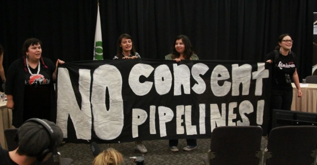 We have a responsibility to future generations to assert our sovereignty - said Amanda Lickers of the Seneca-Haudenosaunee community - Photo courtesy of submedia.jpg