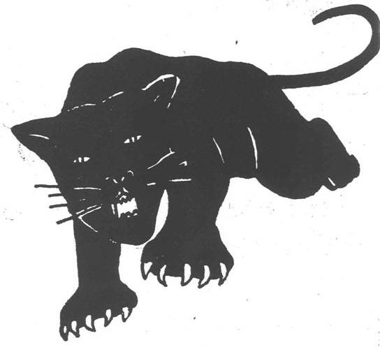 panther-gwen1