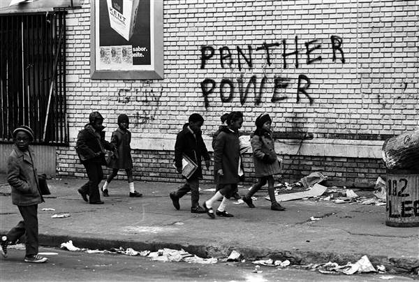panther power.jpg